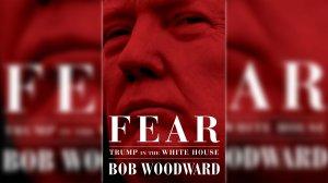 """Portada de libro """"Fear Trump in the White House"""